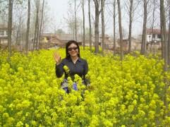 yellow xu - Copy